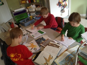 Owl Unit: Illustrating Owls in our journals